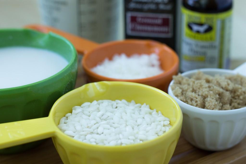 Healthy Coconut Rice Pudding Dessert Recipe